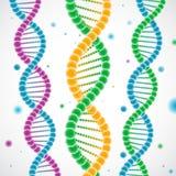 Filamentos coloridos de la DNA ilustración del vector