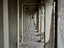 Filary, Siem Przeprowadzają żniwa, Kambodża zdjęcie royalty free