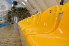 Filas de asientos amarillos Fotografía de archivo libre de regalías