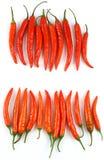 Filas de chiles frescos rojos Imagen de archivo libre de regalías