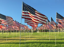 Filas de indicadores americanos Fotografía de archivo libre de regalías