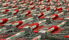 11/09 - Filas de las carretillas vacías del mercado estupendo en la tienda bien conocida de las compras Imagenes de archivo