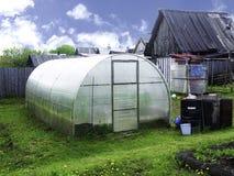 Filas de las plantas de tomate que crecen el invernadero interior Imágenes de archivo libres de regalías
