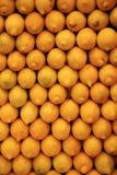 Filas de limones amarillos Foto de archivo libre de regalías