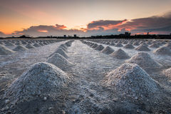 Filas de los campos de la sal en la puesta del sol Fotografía de archivo libre de regalías