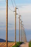 Filas de los pilones eléctricos de la distribución Fotografía de archivo
