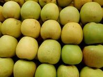 filas de manzanas amarillas Fotografía de archivo