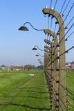 Filas del alambre de púas con las linternas a través del perímetro de Auschwitz Imagen de archivo libre de regalías
