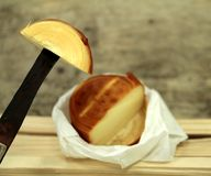 Filata, cow`s milk cheese Stock Image