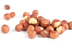 Filbert. Nuts a filbert  on white background Royalty Free Stock Photography