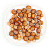 Filbert nut Stock Image
