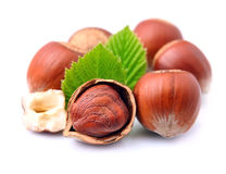 Filbert nuts Royalty Free Stock Photos