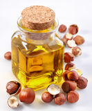 Filbert oil with nuts. On a white background Royalty Free Stock Image