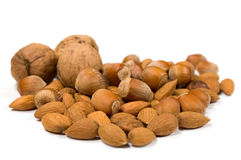 Filberts , almonds and walnuts Stock Images