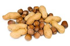 Filberts e amendoins Fotos de Stock