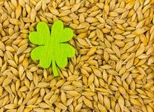 Filc zielonego liścia koniczynowy pocztówkowy fundacyjny dzień święty Patrick na a z kopii przestrzenią Obraz Stock