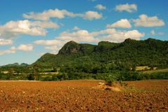 Fild d'agriculture image stock
