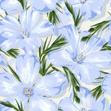 Fild flower pattern Stock Image