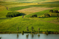 Filds ed acqua verdi Fotografia Stock