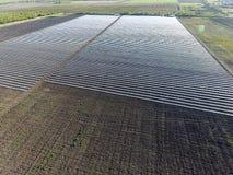File delle serre trasparenti nel campo Verdure crescenti in una terra chiusa Serre nel campo Fotografie Stock