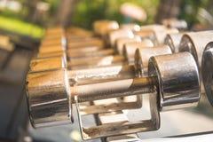 File delle teste di legno del metallo sullo scaffale nella palestra Fotografia Stock Libera da Diritti