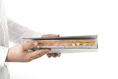 File Folder Stock Photography