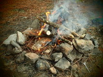 Fire in the forest. Making a fireplace in the forest for a cookout Stock Photography