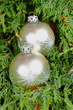 File:///home/jena/Obrázky/Fotobanky/2016/Nehotové/05/13/Raw/Two silver Christmas ornaments on green needles.RAF Royalty Free Stock Images