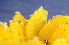 Filea apelsinen med havregröt i krukan, lager av fruktsaft Royaltyfri Fotografi