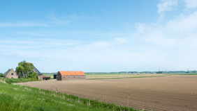 Filed with potato ridges and a farm in springtime Royalty Free Stock Photography