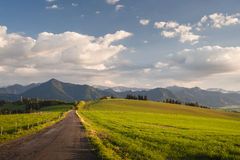 Filed road Royalty Free Stock Images