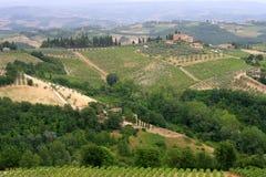 fileds kształtują teren Tuscany winogrady Zdjęcie Stock