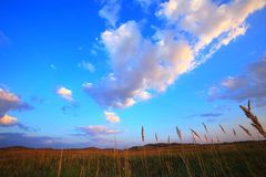 Fileds and sky Royalty Free Stock Image