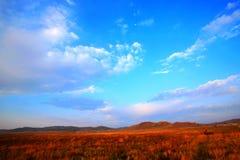 Fileds y cielo Foto de archivo