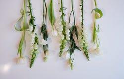 Fileira branca e verde das flores Fotos de Stock Royalty Free