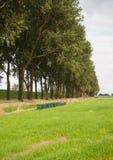 A fileira da abelha verde acumula em uma paisagem rural Imagem de Stock