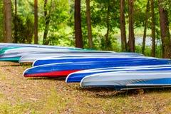 Fileira da canoa na floresta do pinho no close-up da costa foto de stock