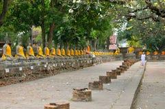 Fileira da estátua de Buddha Imagens de Stock