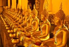 Fileira da estátua dourada de buddha Imagem de Stock Royalty Free