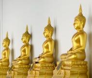Fileira da estátua dourada de Buddha Imagens de Stock