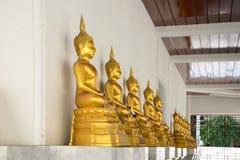 Fileira da estátua dourada de Buddha Fotos de Stock