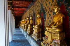 Fileira da estátua dourada de Buddha no templo foto de stock