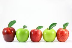 Fileira da maçã Imagem de Stock