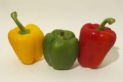 Fileira da paprika 3 Fotografia de Stock Royalty Free