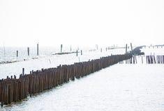 Fileira da proteção litoral da costa de bambu em uma baía da província de Samut Prakan, Tailândia foto de stock