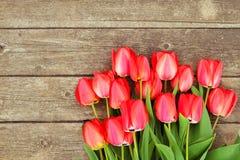 A fileira da tulipa brilhante do vermelho rico floresce na haste Fundo de madeira com espaço scopy do texto Mola e verão bem-vind Foto de Stock Royalty Free