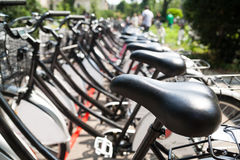 Fileira das bicicletas Imagem de Stock Royalty Free