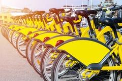 Fileira das bicicletas estacionadas Fileira de bicicletas coloridas estacionadas Bicicletas amarelas alugado O teste padrão do vi Imagens de Stock