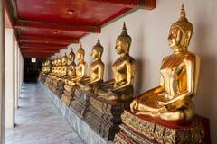 Fileira das estátuas douradas da Buda do assento Foto de Stock