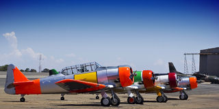 Fileira de AT-6 norte-americano Harvards Fotografia de Stock